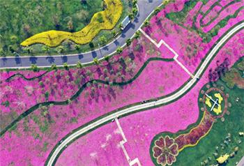ดอกไม้บานเดือนเมษายนเขตหมีเล่อ-ยูนนาน ทิวทัศน์งดงามดั่งภาพวาด