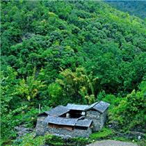 保山汪家箐:藏在绿水青山中的古村落