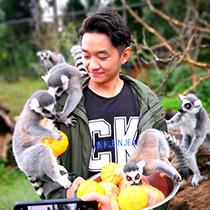 """云南野生动物园里小动物们享""""月饼""""迎双节"""