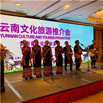 云南省在上海推介文化旅游