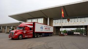China-ASEAN trade gathers steam despite global gloom