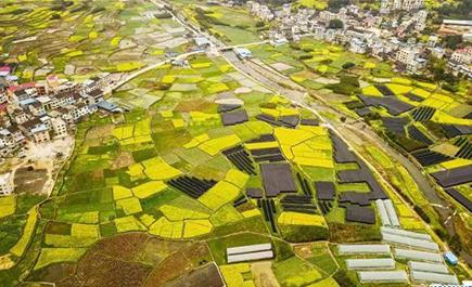 Phong cảnh mùa xuân ở Quý Châu