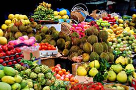 中泰水果贸易持续扩大 探索拓宽水果输华通道