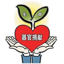 云南导游字文山遗体器官捐献引出爱心传递