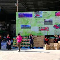 云南鲁甸震后恢复重建累计完成投资109.64亿元