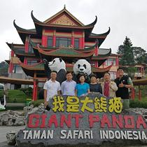 印尼民众翘首企盼熊猫馆开馆