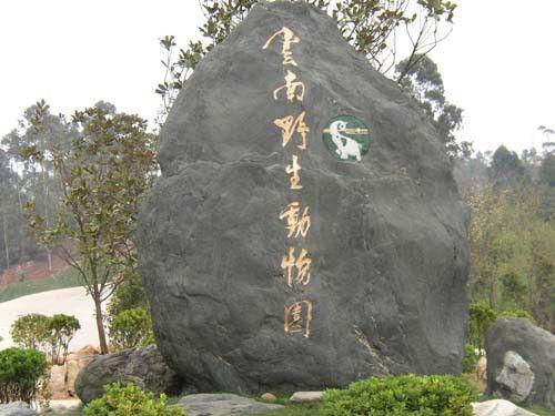 6月1日起 云南野生动物园门票涨至100元