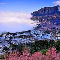 云南元阳梯田:文化与自然巧妙融合的绝美画卷