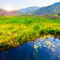 云南保山新增9个3A旅游景区 快来看看都有哪些