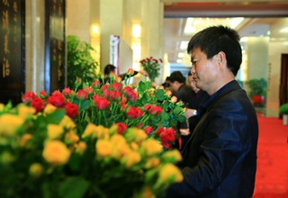 Yunnan: China's top flower producer for 24 years