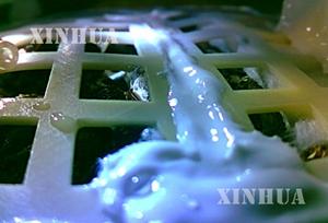 လကမာၻေရာက္ တရုတ္အာကာသယာဥ္ Chang'e-4 ေပၚရွိ ဝါဂြမ္းေစ့မွ အပင္ေပါက္လာ