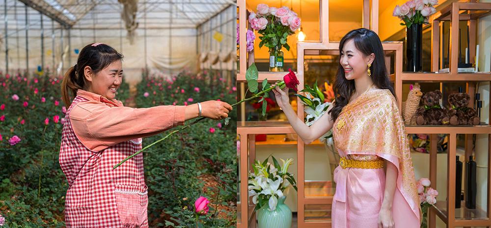 จากสวนดอกไม้ในยูนนานไปถึงร้านดอกไม้ในไทย