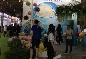 คุนหมิงจัดงานนิทรรศการดอกไม้นานาชาติ ครั้งที่ 19 ดอกไม้จากนานาประเทศเข้ามาร่วมประชันความงาม